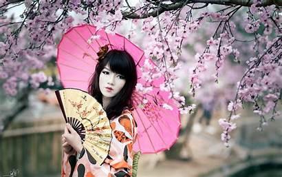 Cherry Blossom Japan Geisha Fans Parasol Splendid