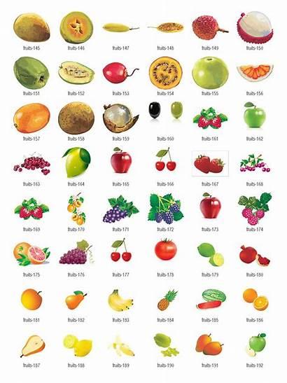 Fruits Fruit Clipart Vector Clip Tune Header