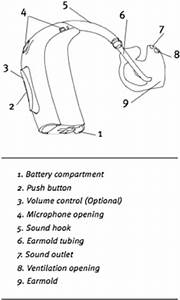 Schematic Of A Bte Hearing Aid    Courtesy Of Oticon  Inc