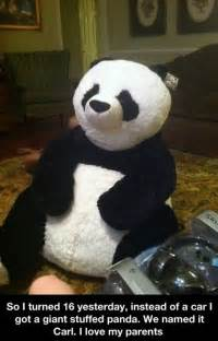 Panda Bear Funny Quotes for Birthdays