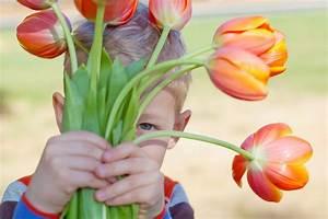 Tulpen Im Glas Ohne Erde : tulpen im glas ohne erde ostseesuche com ~ Frokenaadalensverden.com Haus und Dekorationen