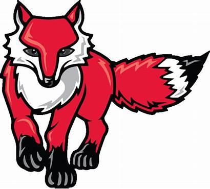 Fox Clipart Foxes Marist Clip Logos Face