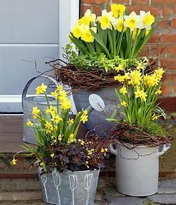 Welche Blumen Blühen Im Mai : narzissen pflanzenportr t pflege und dekotipps living at home ~ Eleganceandgraceweddings.com Haus und Dekorationen