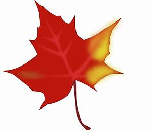 Fall Leaf Clip Art at Clker.com - vector clip art online ...
