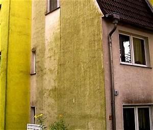 Styropor Dämmung Schimmel : algenbefall fassade w rmed mmverbundsystem wdvs m ngel sch den 13 ~ Whattoseeinmadrid.com Haus und Dekorationen