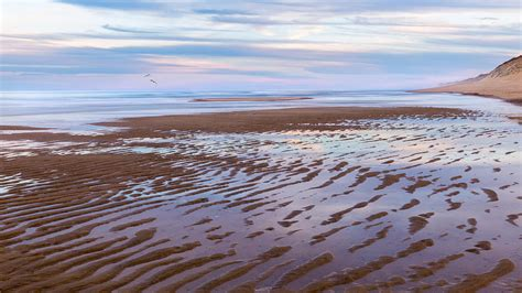 Cape Cod Low Tide Sunset Photograph By Bill Wakeley