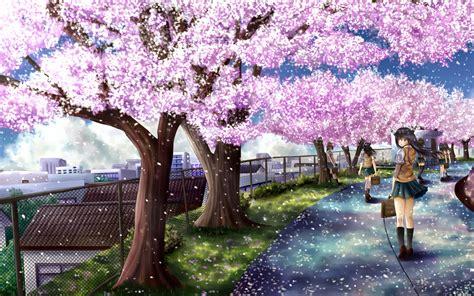 Sakura Background Wallpapersafari