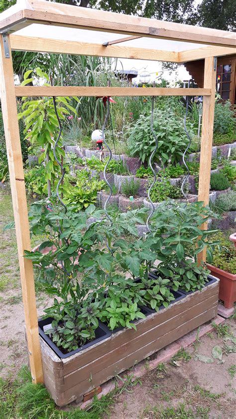 Garten Hochbeet Pflanzen by Tomatenhaus Garten Tomaten Haus Tomatenhaus Und