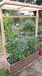 Tomaten Rankhilfe Selber Bauen : tomatenhaus garten tomaten haus tomatenhaus und garten hochbeet ~ A.2002-acura-tl-radio.info Haus und Dekorationen
