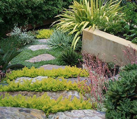waterwise garden home dzine garden foolproof gardens for those that hate gardening