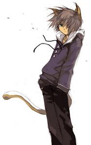 cat boy the boy with cat ears anime fanpop page 3