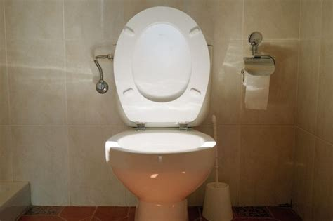 a toilet in has been put up for rent for 163 3 000 a month information nigeria