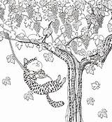 Coloring Million Cats Felines Fabulous Lulu Mayo Swings Colouring Colour Maleboeger sketch template