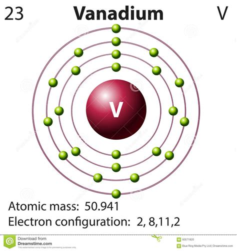 Symbol And Electron Diagram For Vanadium Stock Vector