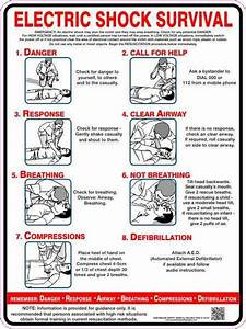 Electric Shock Survival  U2013 Australian Safety Signs