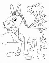 Donkey Coloring Donkeys Ane Printable Dessin Coloriage Ausmalbilder Animal Animals Heureux Farm Sheet Superbe Palm Sunday Sheets Esel Smartest Kinder sketch template