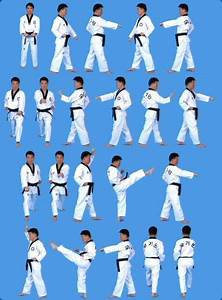 Taegeuk Il Jang – Tae Kwon Do Form #2 | circuskitchen