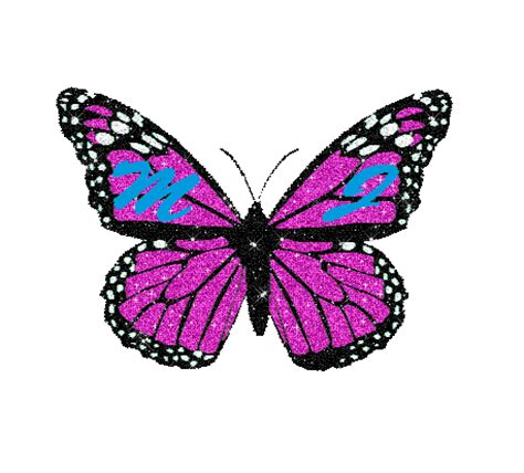 wallpaper sticker kupu kupu butterfly animated gif transparent