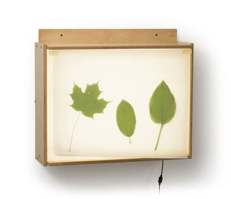 wall mounted light box 10 methods to enhance the