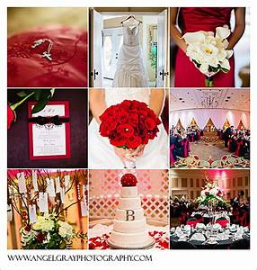 Best Wedding Venues In Brevard Our Favorite Ceremony And