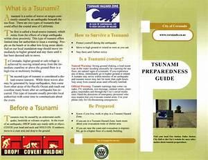 Tsunami Preparedness Guide  Natural Disaster Preparation List