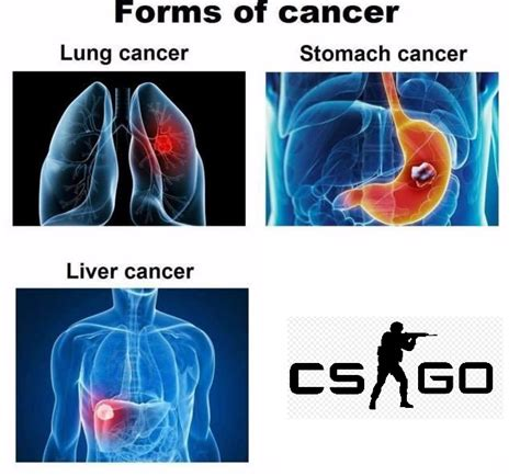 cancercommunity related memes    rise invest