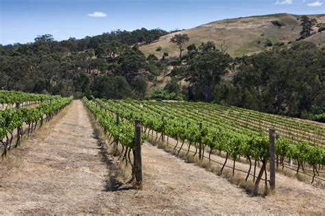 Spiller park toco hills is open seven days a week from 7 a.m. Moorabool Ridge - Wine Geelong