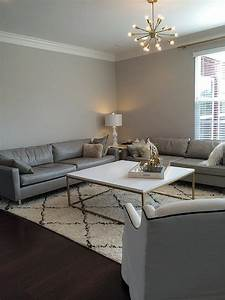 Sherwin Williams Gray Paint Colors - Contemporary - living
