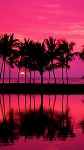 Tumblr Palm Trees Girly Pink Iphone Plus Wallpaper Tumblr ...