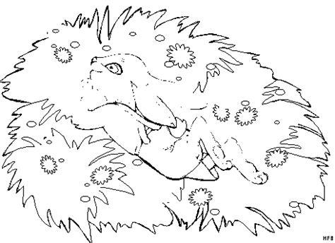 hase auf der blumenwiese ausmalbild malvorlage fruehling