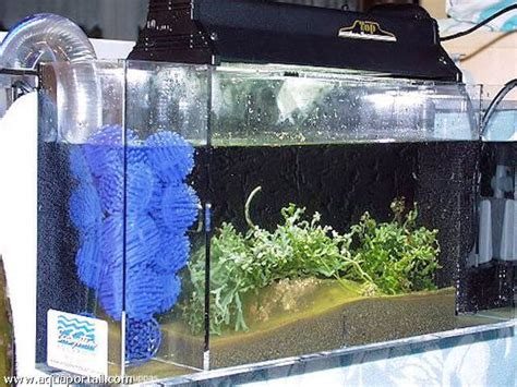 fabriquer aquarium en plexiglas comment construire un aquarium en plexiglas la r 233 ponse est sur admicile fr
