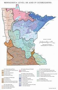 List Of Ecoregions In Minnesota