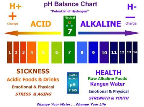 water dan strong acid monitoring your 39 s ph levels