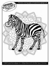 Coloring Zebra sketch template
