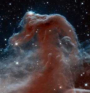 APOD: 2013 April 22 - The Horsehead Nebula in Infrared ...