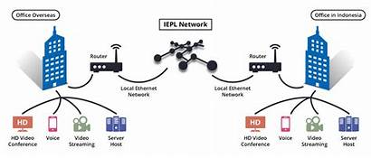 Leased Line Iepl Point Communication Ethernet Connectivity