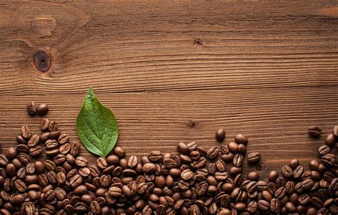 Get the coffee bean icon and 1717 other icons in line icon style and a myriad of other style and color combinations. Coffee Bean Wallpapers - Top Free Coffee Bean Backgrounds - WallpaperAccess