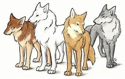 Wolf Rain Characters Deviantart Wildspiritwolf Anime Cartoon