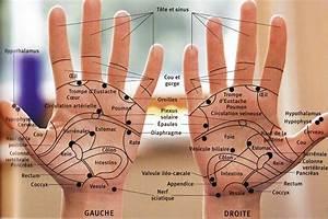 Digitopuncture Maigrir : reflexologie palmaire pour maigrir rq11 jornalagora ~ Melissatoandfro.com Idées de Décoration