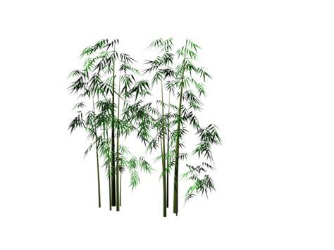 bamboo grove 3d 3dsmax files free