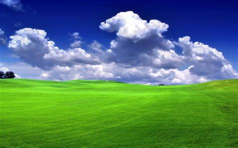 3d Green Nature Wallpaper by Green Field Hd Desktop Wallpapers Free Nature