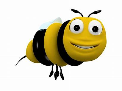 Bee Cartoon 3d Character Characters Animated Insect
