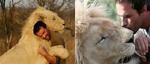The Wild Hug : man attempts to hug a wild lion what happens next stunned me sf globe ~ Eleganceandgraceweddings.com Haus und Dekorationen