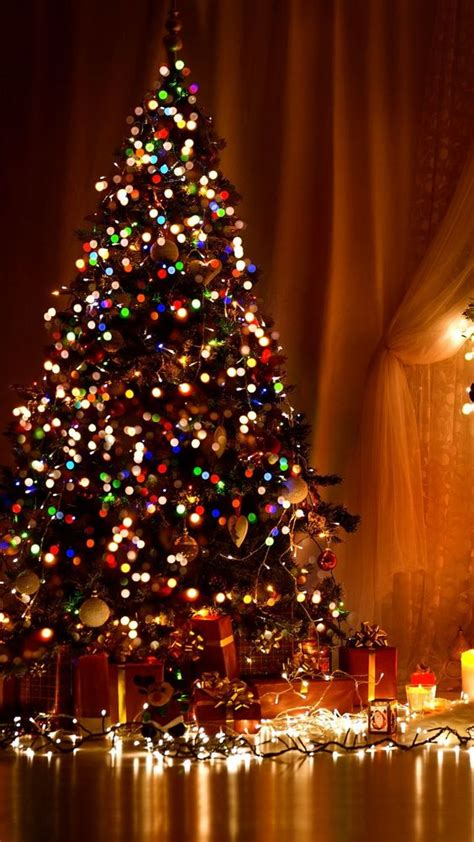 Tree Lights Iphone Wallpaper by Wallpapers For Iphone Best