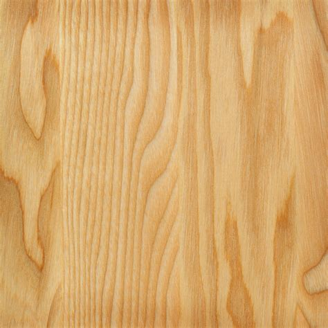 Wood Backgrounds Wood Texture Background Tree Wood Photo Ff E