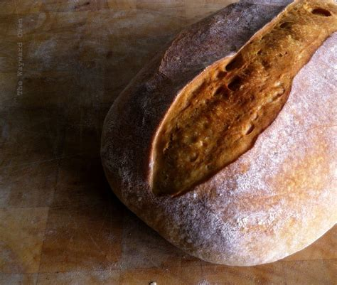 One doesn't come across barley bread very much, if at all! Barley: The biga the better | Barley, Bread, Biga
