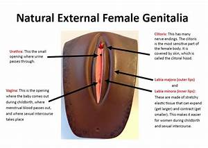 Nana Podungge U0026 39 S Simple Thought  Female Genital Mutilation