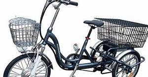 Elektro Trike Scooter : elektro dreirad jorcy 10ah lithium akku elektrodreirad ~ Jslefanu.com Haus und Dekorationen