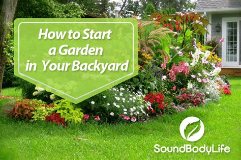 how to start a garden how to start a garden in your backyard soundbodylife