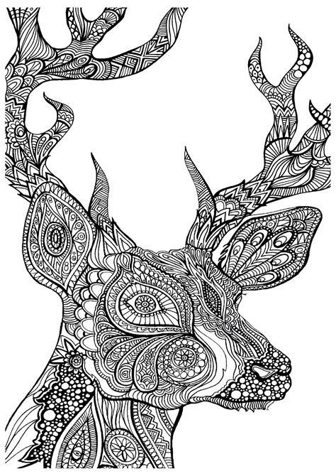 adult colouring pages  printables